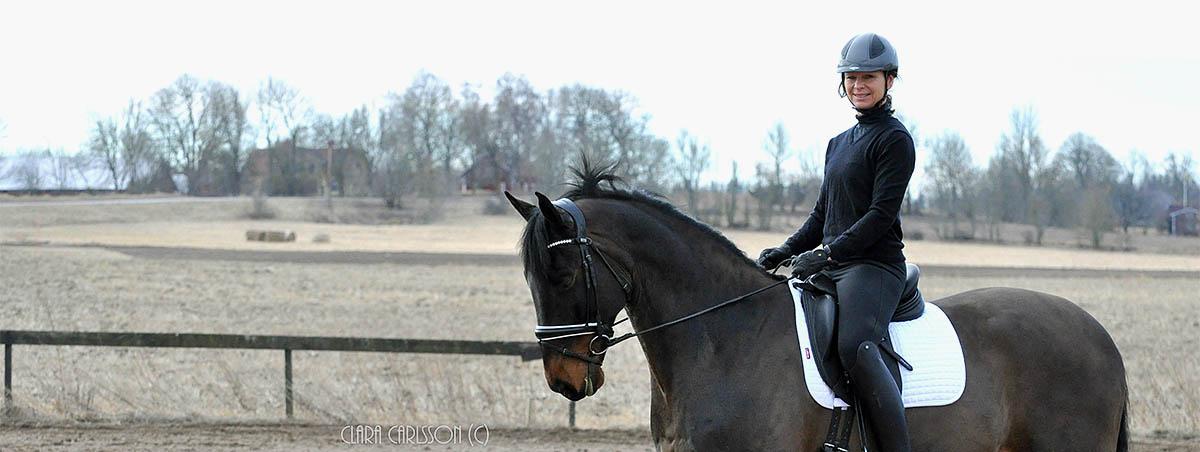 160322-15-Elegant-startsidaclarablek